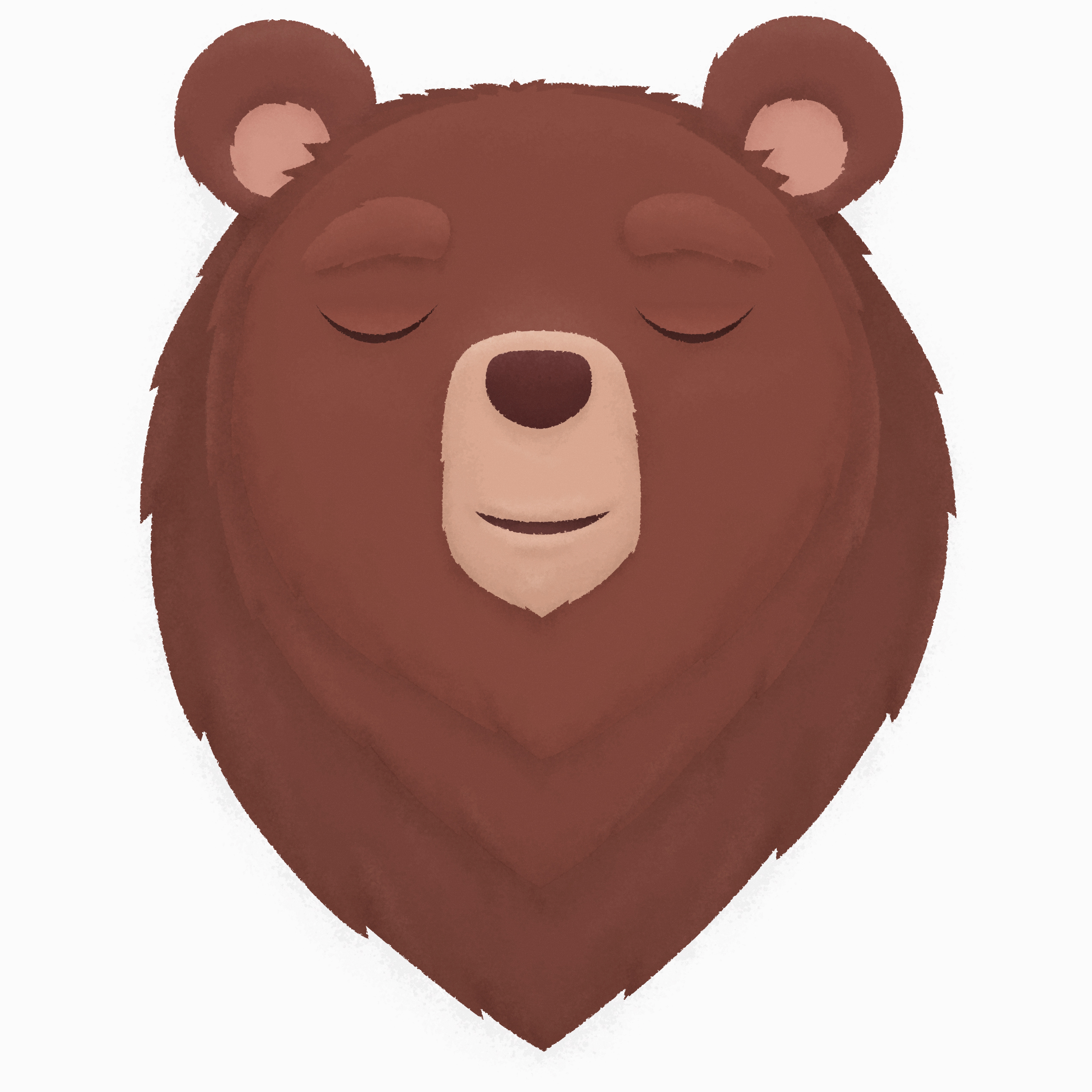 bear_illustration