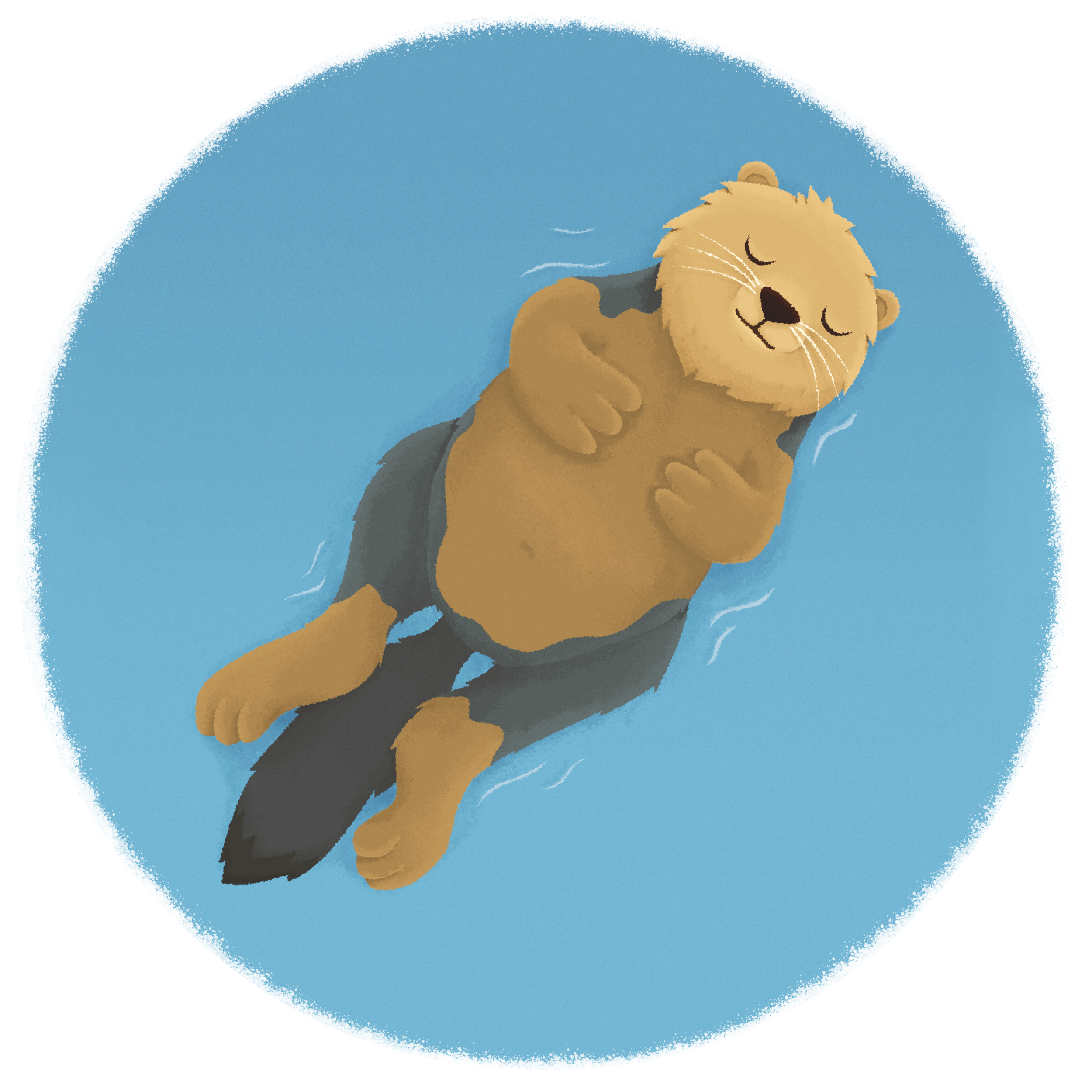 otter_illustration